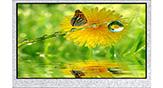 4.3インチ 480x272 ディスプレイ TFT LCD - WF43GTIAEDNN0