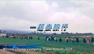 Company Travel Activity 2019